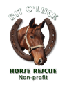 Horse Rescue Donations and Volunteers Needed