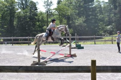 ISO Barn Manager/Riding Instructor